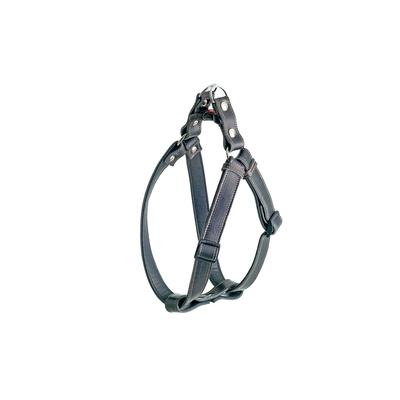 Ledergeschirr Rondo Step and Go, schwarz - B: 25 mm  (Verstellbarkeit Hals: 60 - 90 cm / Brust: 60 - 90 cm)