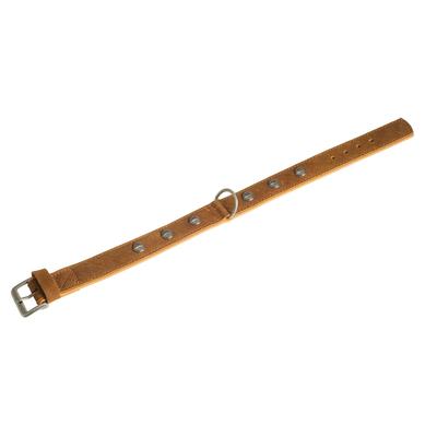 Lederhalsband Buffalo Oriental für Hunde, braun-hellbraun - L: 65 cm B: 40 mm (Verstellbarkeit Hals: 50 - 58 cm)