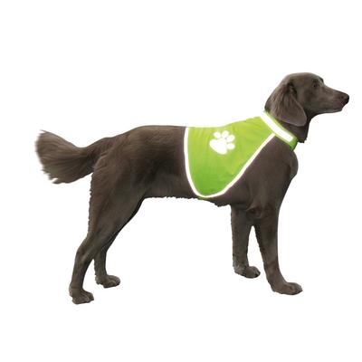 Leuchtende Neon Sicherheitsweste für Hunde