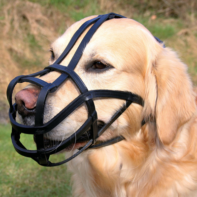 Trixie Maulkorb für Hunde aus Zügelleder