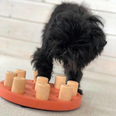 Nina Ottosson Dog Smart Hunde Solitär Preview Image