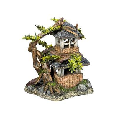 Nobby Haus mit Bonsai