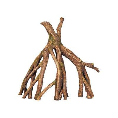 Nobby Mangrove