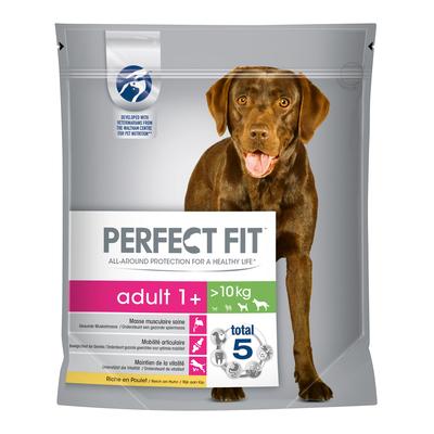 Perfect Fit Huhn Adult 1+ für mittlere und große Hunde
