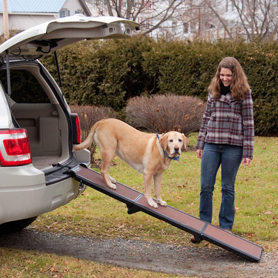 Pet Gear Travel Lite Hunderampe