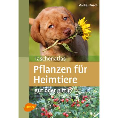 Ulmer Pflanzen für Heimtiere