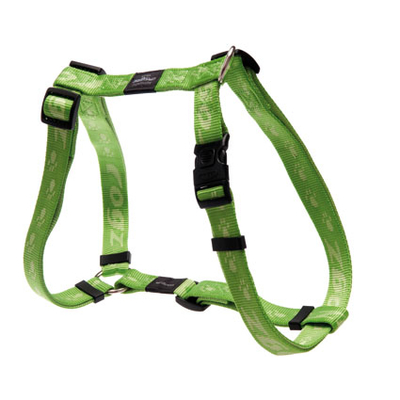 Rogz Alpinist H-Geschirr für Hunde, XL: Everest - lime