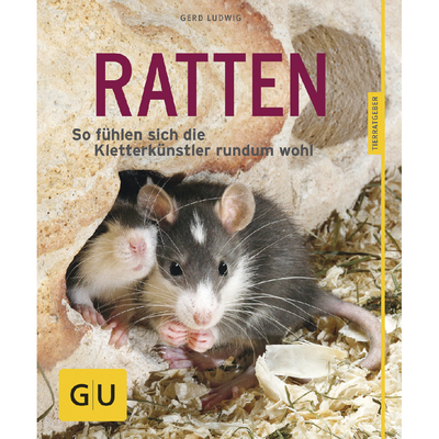 Ratten als Heimtiere - der Ratgeber