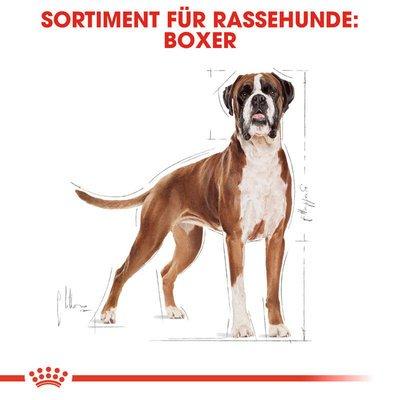 Royal Canin Boxer Adult Hundefutter trocken Preview Image