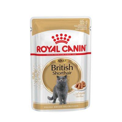 Royal Canin British Shorthair Adult Katzenfutter nass für Britisch Kurzhaar