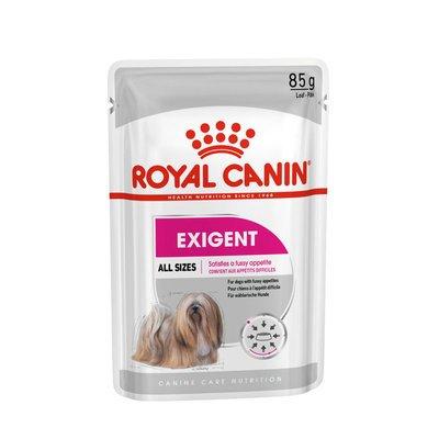 Royal Canin CCN Exigent Nassfutter für wählerische Hunde