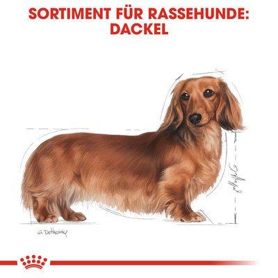 Royal Canin Dachshund Adult Hundefutter trocken für Dackel Preview Image