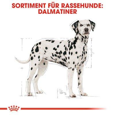 Royal Canin Dalmatian Adult Hundefutter trocken für Dalmatiner Preview Image