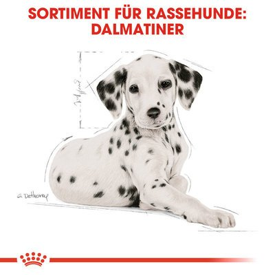 Royal Canin Dalmatian Puppy Welpenfutter für Dalmatiner Preview Image