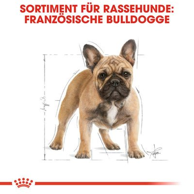 Royal Canin French Bulldog Adult Hundefutter trocken für Französische Bulldoggen Preview Image