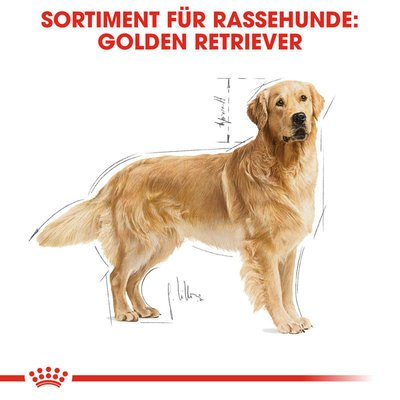 Royal Canin Golden Retriever Adult Hundefutter trocken Preview Image