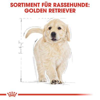 Royal Canin Golden Retriever Puppy Welpenfutter trocken Preview Image