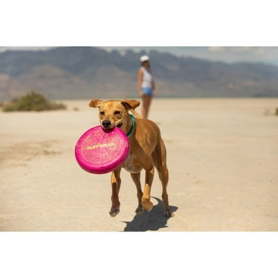 Ruffwear Camp Flyer™ Frisbee Hundespielzeug Preview Image
