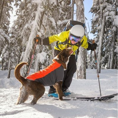 Ruffwear Cloud Chaser™ Soft Shell Jacke für Hunde Preview Image