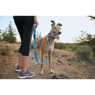 Ruffwear Web Reaction™ Collar Hundehalsband Preview Image