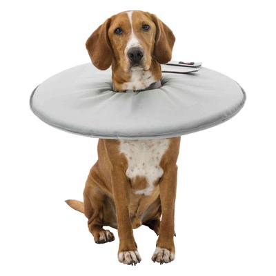Schutzkragen für Hunde Leckschutz