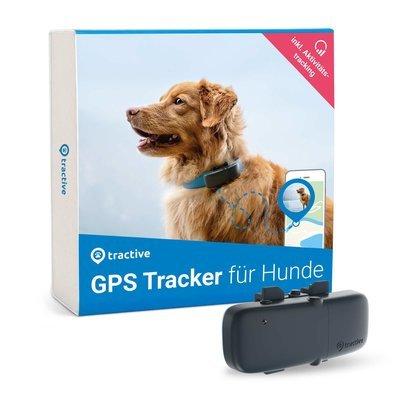 Tractive GPS Tracker für Hunde mit Aktivitätstracking