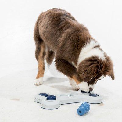 TRIXIE Dog Activity Flip Bone Hundespiel Preview Image