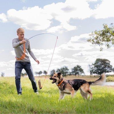TRIXIE Dog Activity Reizangel für Hunde Preview Image