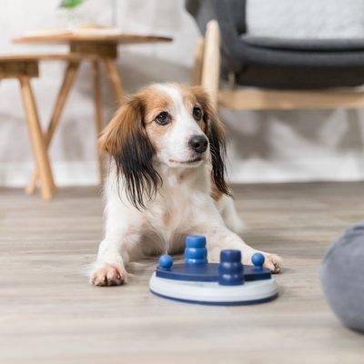 TRIXIE Hunde Geschicklichkeitsspiel Push Away Preview Image