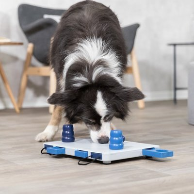 TRIXIE Hunde Intelligenzspiel Move2Win Preview Image