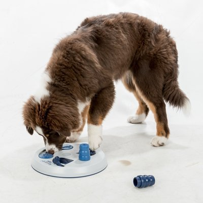 TRIXIE Hunde Strategiespiel Flip Board Preview Image