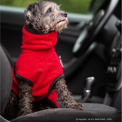 Trockenmantel für Hunde fit4dogs Dryup Mini, rot - 40 cm