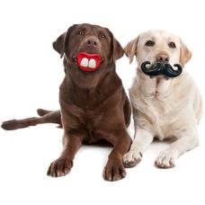 Vollgummi Hundespielzeug