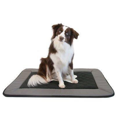 wauweich Hundematte mit Knochen-Motiv Preview Image
