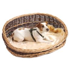 Aumüller Weidenkorb für Hunde mit hohen Rückenteil