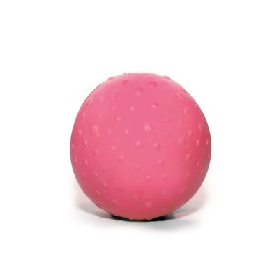 Wolters Bite Me! Bounzer Naturkautschukball für Hunde
