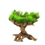grün - 22x19x23,5cm
