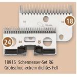 R6 18/24 Zähne, Grobschur, extrem dichtes Fell