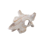 Büffelschädel - 12 x 5,5 x 8 cm