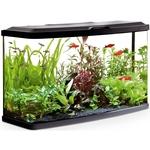87 Liter Aquarium: 76 x 30 x 45,7 cm