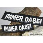 IMMER DABEI!