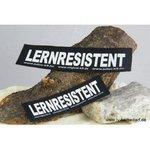 LERNRESISTENT