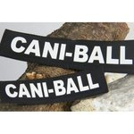 CANI-BALL