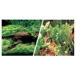 Japanische Landschaft oder Pflanzen mit Wurzeln - 45 x 75 cm