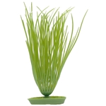 Hairgrass - 8,0 x 3,7 x 16,0 cm