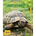 Landschildkröten, glücklich & gesund