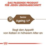 Ageing 12+