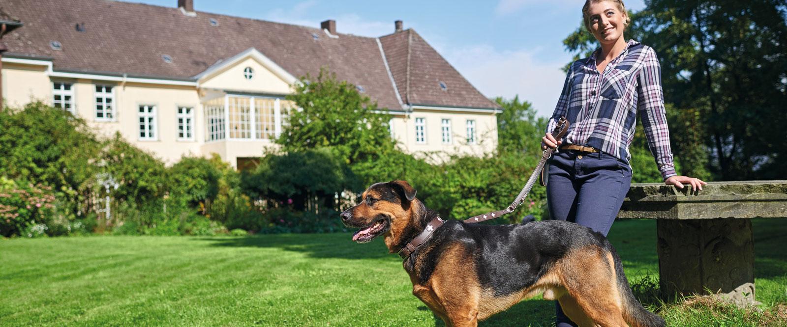 Hunter Swiss Hundehalsbänder und Hundeleinen, Bild 3