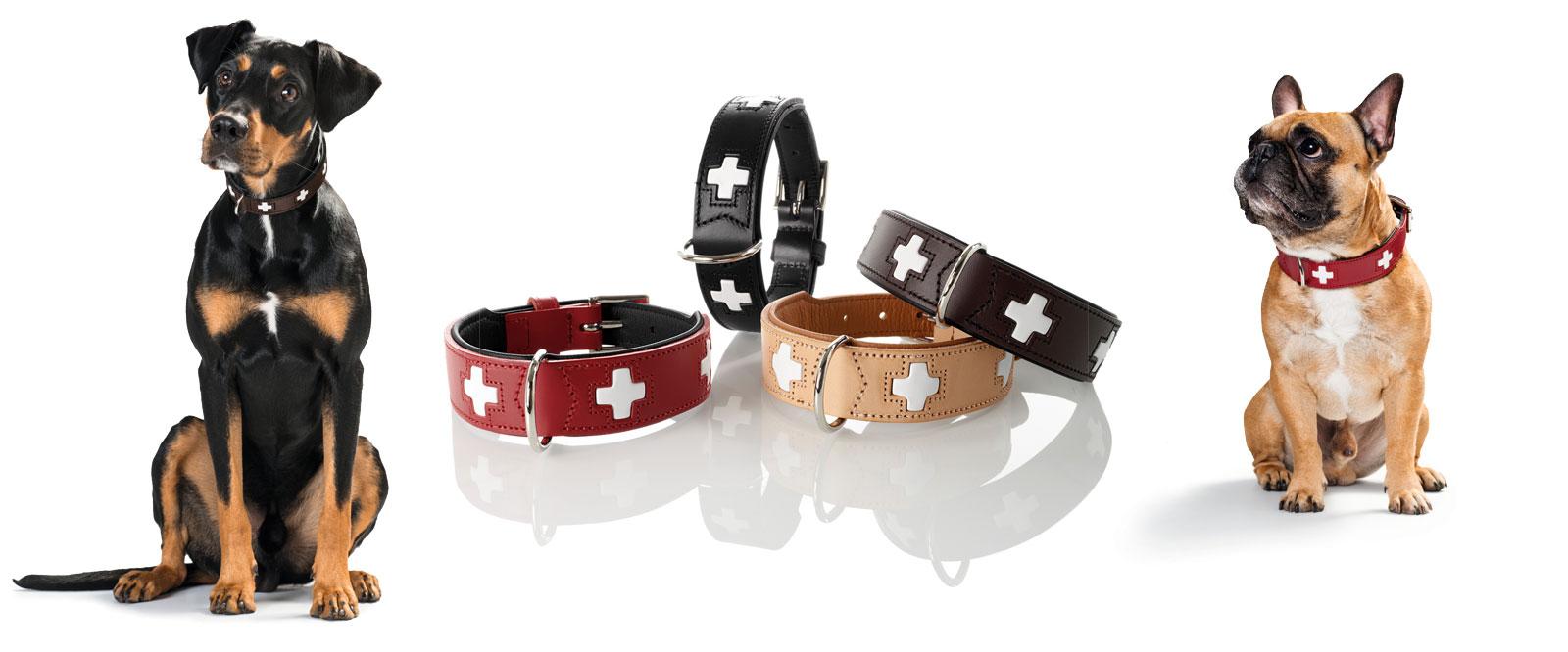 Hunter Swiss Hundehalsbänder und Hundeleinen, Bild 4