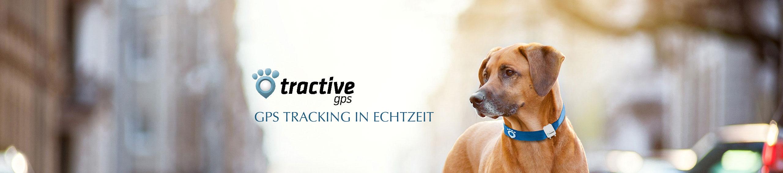 Tractive Online Shop GPS und Activity Monitor, Bild 1